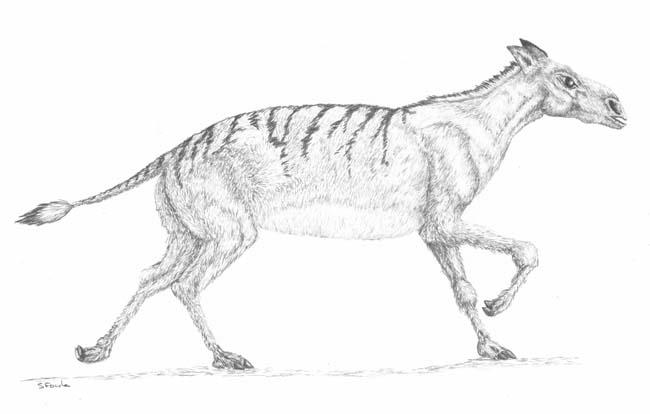 Праисторически коне